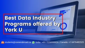 Best Data Industry Programs offered by York u